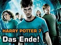 Das Harry Potter Ende
